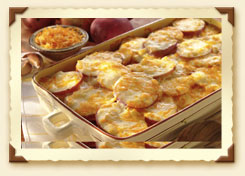 scalloped potatoes amish colby jack